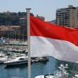 National flag of the Principality of Monaco — Stock Photo