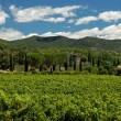 Landscape in the Provence, France — Stock Photo