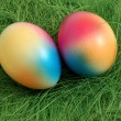 Two Colorful Easter Eggs in a Green Nest — Stock Photo