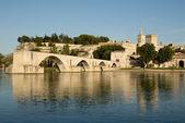 Pont d'Avignon and Rhone river in Avignon, France — Stock Photo