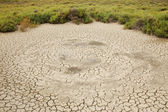 Cracked, parched land in the Camargue, France — Stock Photo