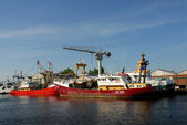 Fishing boats in the harbor of Den Helder, the Netherlands — ストック写真