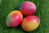 Three Easter Eggs in a Green Nest — Stock Photo