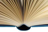 Libro abierto aislado en blanco con trazado de recorte — Foto de Stock