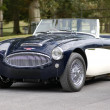 Austin Healy 3000 Mk II — Stock Photo #9872797