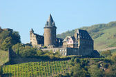 Ancient castle at Rhine River, Germany — Stock Photo