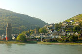 Village at the Rhine River, Germany — Stock Photo