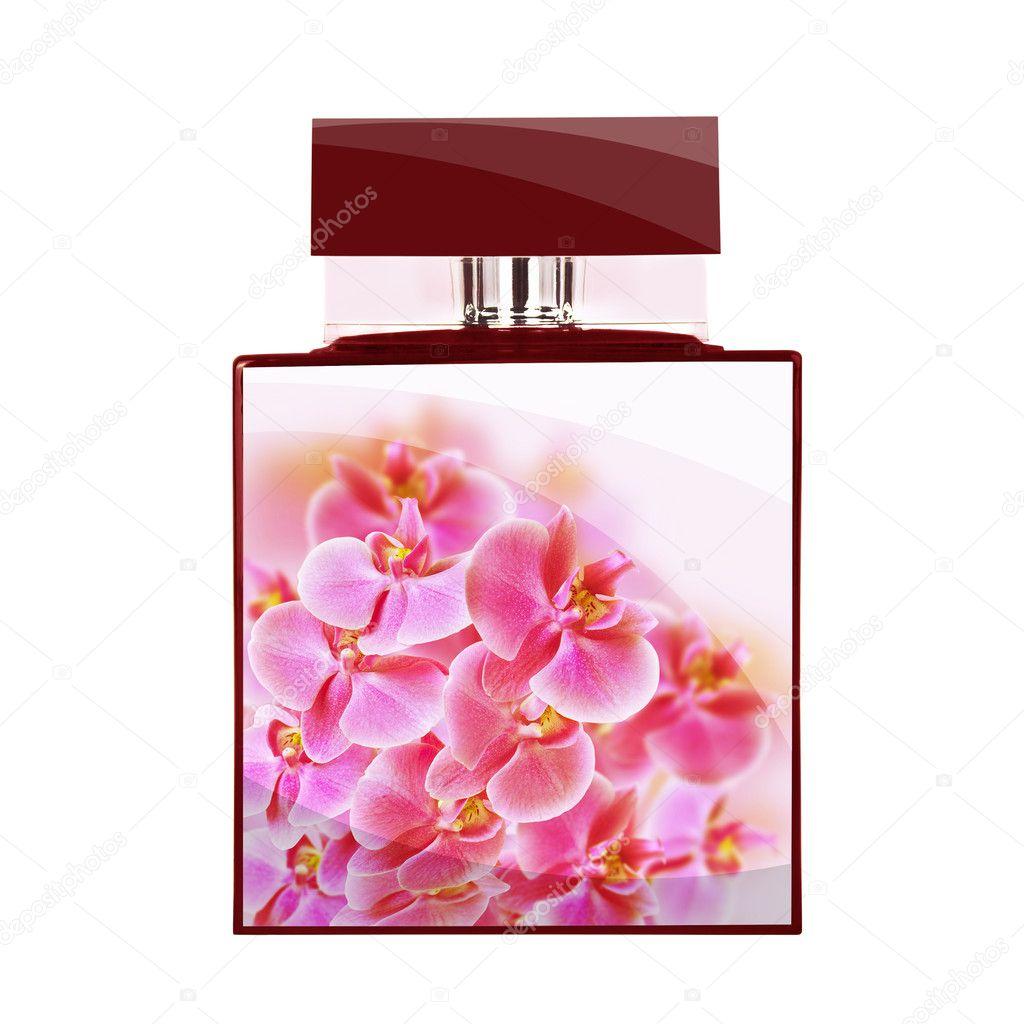 Background of study in gumamela perfume