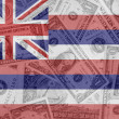 US state of hawaii flag with transparent dollar banknotes in bac — Stock Photo