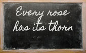 Expression - Every rose has its thorn - written on a school bla — Стоковое фото