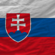 Complete waved national flag of slovakia for background — Stock Photo