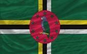 Bandera nacional agitada completa de dominica para el fondo — Foto de Stock