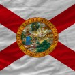 Постер, плакат: Complete waved flag of american state of florida for background