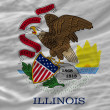 Complete waved flag of american state of illinois for background — Stock Photo