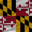 Complete waved flag of american state of maryland for background — Stock Photo