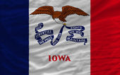 Complete waved flag of american state of iowa for background — Stock Photo