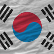 Complete waved national flag of south korea for background — Stock Photo