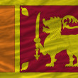 Complete waved national flag of srilanka for background — Stock Photo