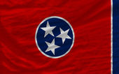 Complete waved flag of american state of tennessee for backgroun — Stock Photo