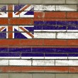 Grunge flag of US state of hawaii on brick wall painted with cha — ストック写真