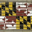 Grunge flag of US state of maryland on brick wall painted with c — Stock Photo
