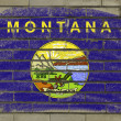Grunge flag of US state of montana on brick wall painted with ch — Stock Photo