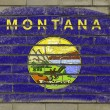 Grunge flag of US state of montana on brick wall painted with ch - Stock Photo