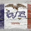 Flag of US state of iowa on grunge wooden texture precise painte — Stock Photo