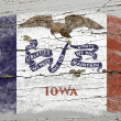 Flag of US state of iowa on grunge wooden texture precise painte — Stock Photo #8776749