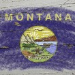 Flag of US state of montana on grunge wooden texture precise pai - Stock Photo