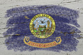 Flag of US state of idaho on grunge wooden texture precise paint — Stock Photo