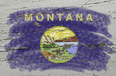 Flag of US state of montana on grunge wooden texture precise pai — Stock Photo