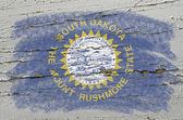 Flag of US state of south dakota on grunge wooden texture precis — Stock Photo