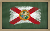 Flag of us state of florida on blackboard painted with chalk — ストック写真