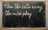 Expression - When the cat's away, the mice play - written on a — Stok fotoğraf