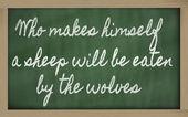Výraz - kdo dělá sám ovce bude sežrán wol — Stock fotografie
