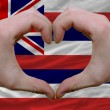 Over american state flag of hawaii showed heart and love gesture - Stock Photo