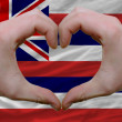 Stock Photo: Over americstate flag of hawaii showed heart and love gesture