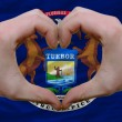 Over american state flag of michigan showed heart and love gestu - Stockfoto
