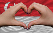 Over national flag of singapore showed heart and love gesture ma — Stock Photo