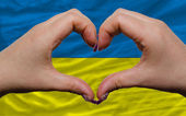 Over national flag of ukraine showed heart and love gesture made — Stock Photo