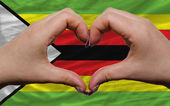Over national flag of zimbabwe showed heart and love gesture mad — Stock Photo