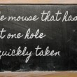 Expression -  The mouse that has but one hole is quickly taken - — Zdjęcie stockowe