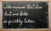 Expression - The mouse that has but one hole is quickly taken - — Stock Photo