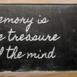Expression -  Memory is the treasure of the mind - written on a — Zdjęcie stockowe