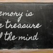 Expression -  Memory is the treasure of the mind - written on a — Photo