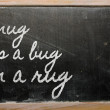 Expression -  Snug as a bug in a rug - written on a school black — Photo