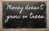 Expression - Money doesn't grow on trees - written on a school — Stockfoto