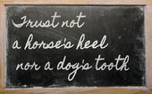 Expression - Trust not a horse's heel nor a dog's tooth - writt — Stock Photo