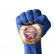 Fist painted in colors of us state of minnesota flag — Stock Photo